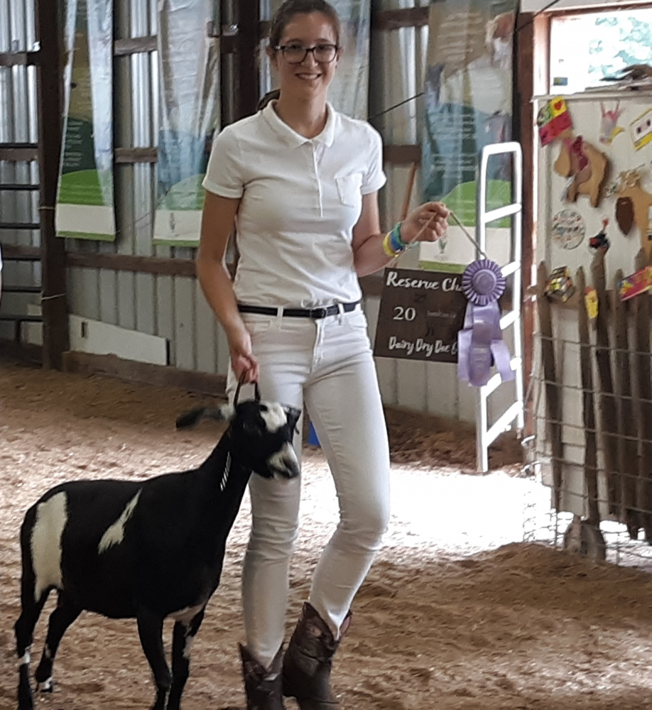 "Photo of Josie Wagner leaving the ring with her Mini-Nubian goat ""Lighting Bolt following open class goat show competition  at the 2019 Trumbull County Fair [Josie Wagner]"